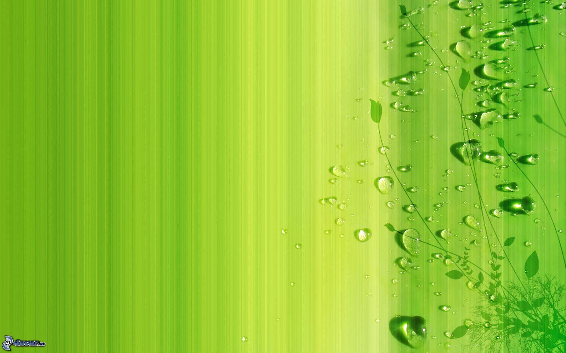 Fondos De Color Verde Agua