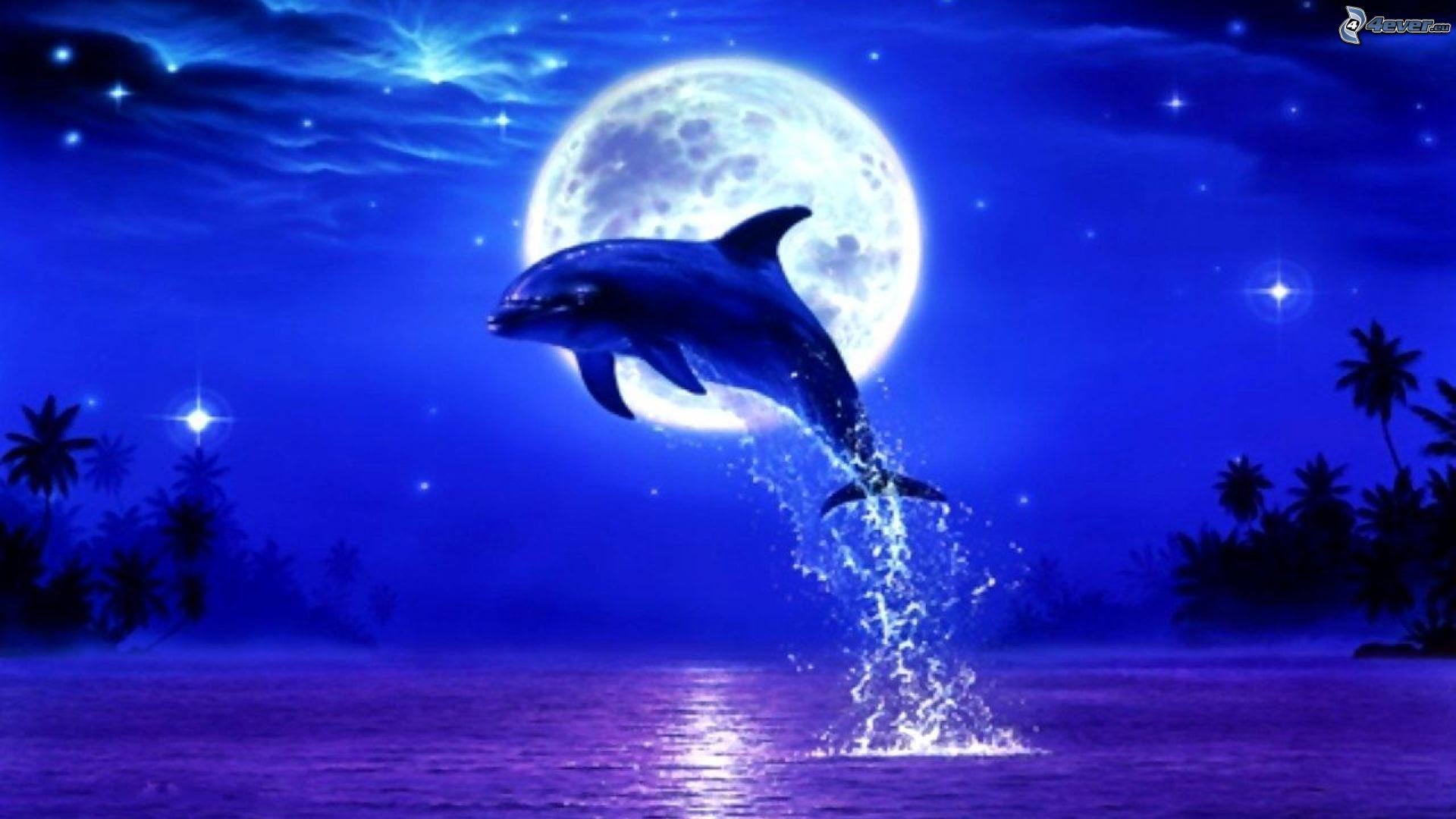 delfines saltando Sea Turtle Clip Art Sea Turtle Clip Art