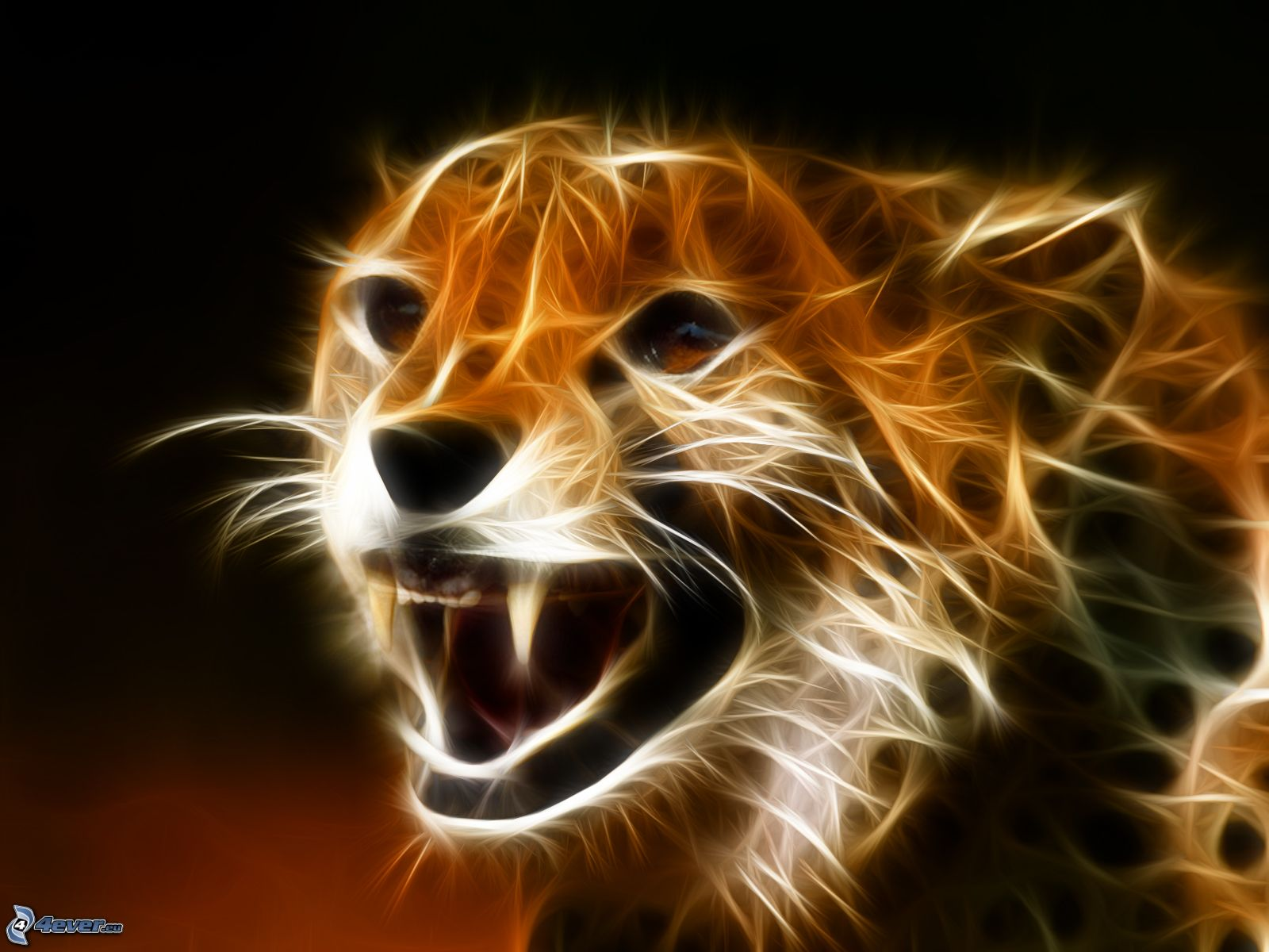 25 fractales de animales hd alguno va a gustarte taringa for Sfondi desktop 3d