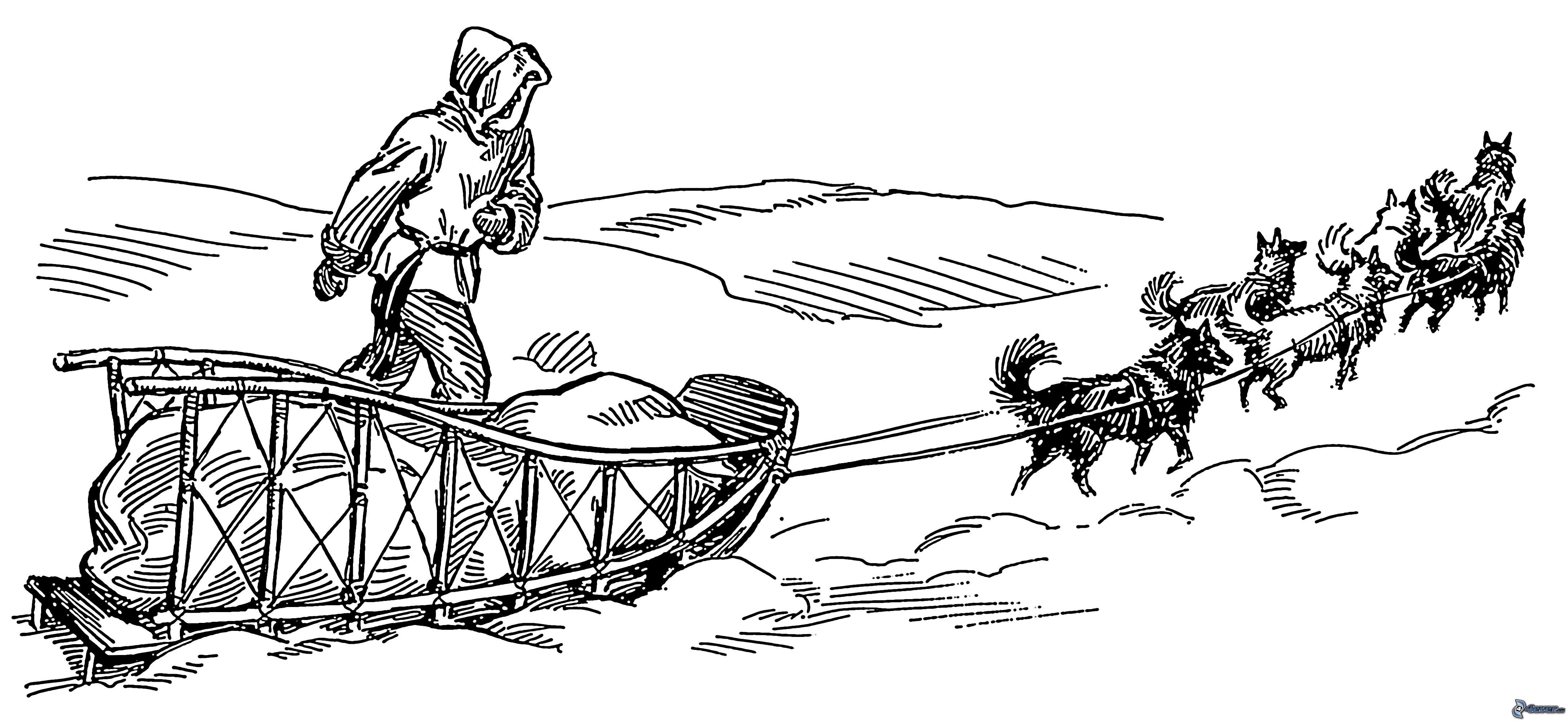 trineos tirados por perros