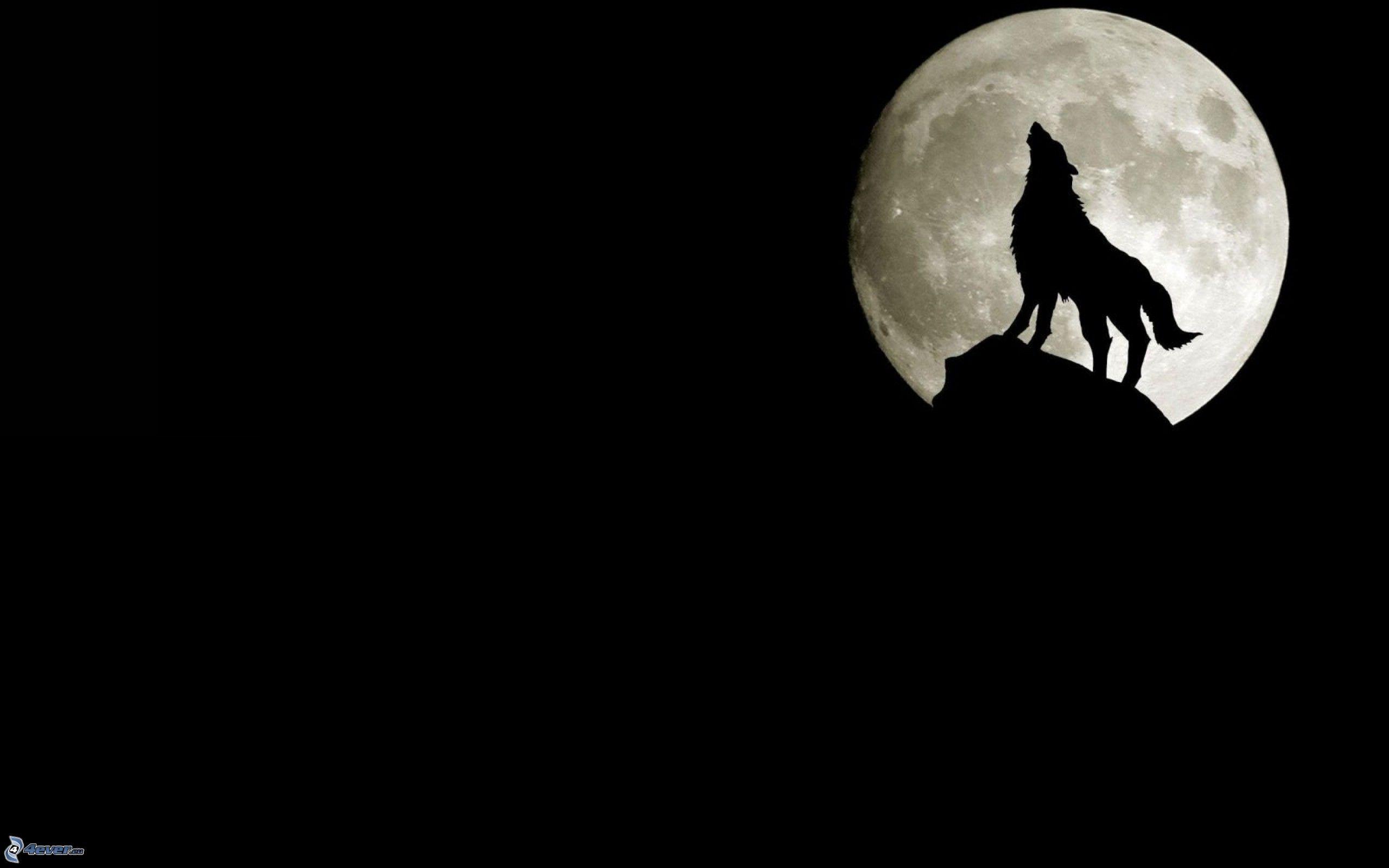 Silueta Lobo: Silueta De Un Lobo