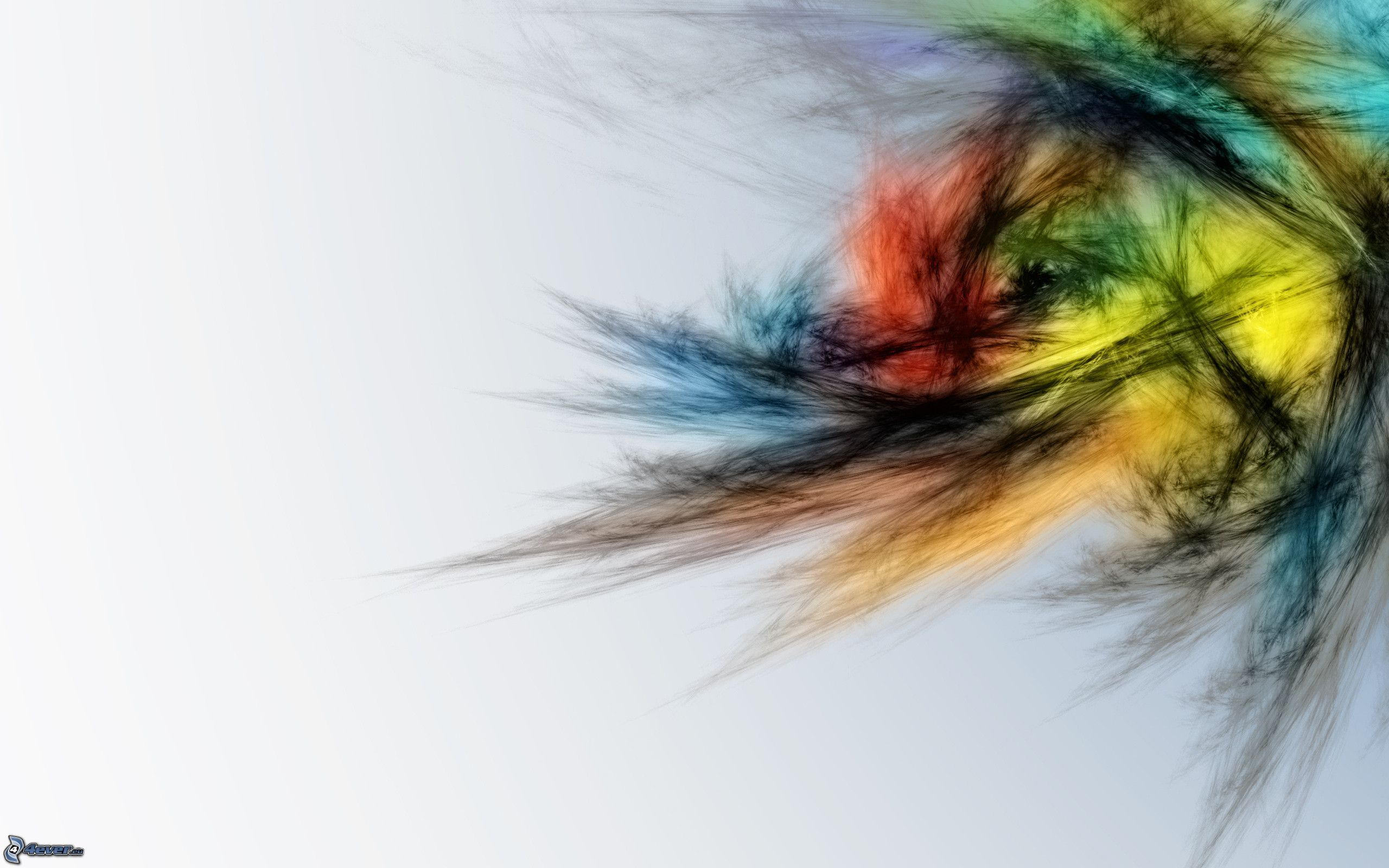 awesome colored feathers wallpaper - photo #38