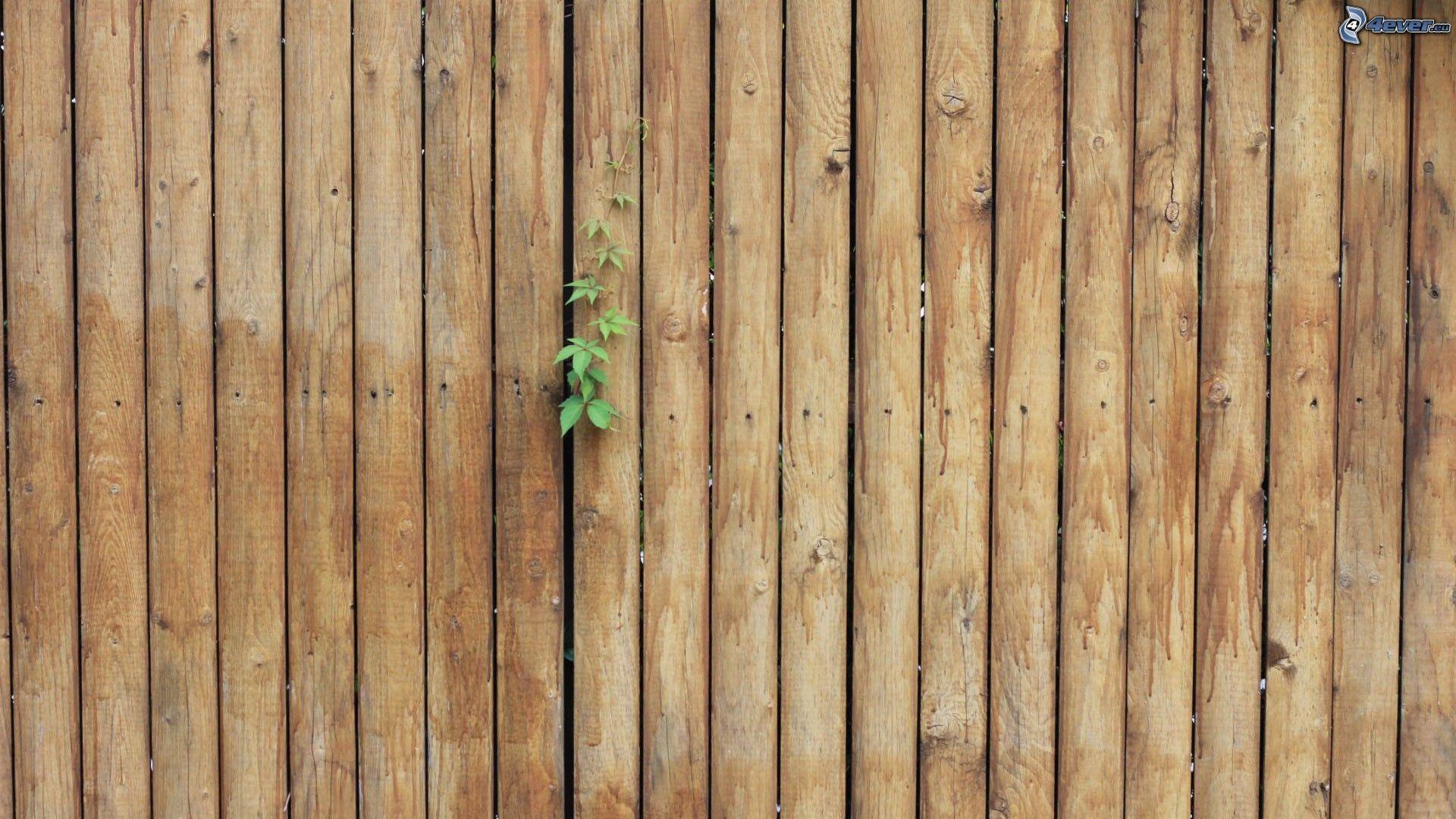 Cerco de madera - Fotos en madera ...