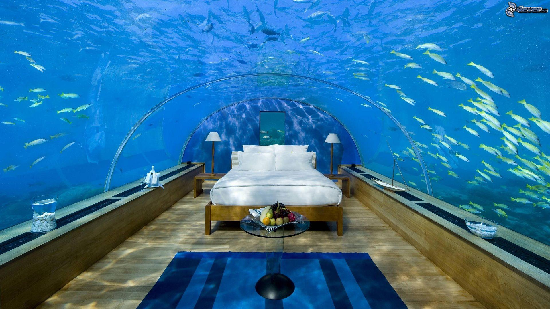 Hotel conrad for Hotel bajo el agua precio