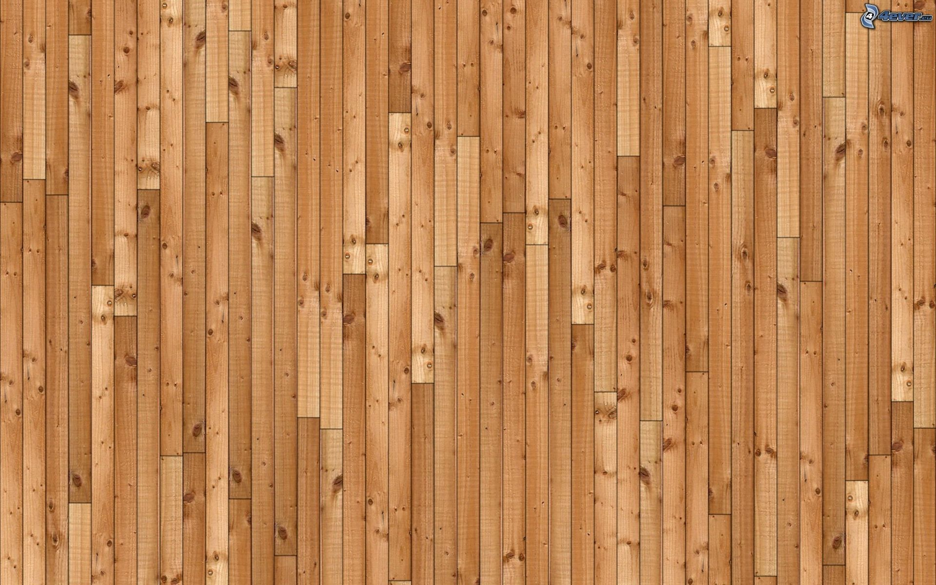 Pared de madera for Paredes con madera