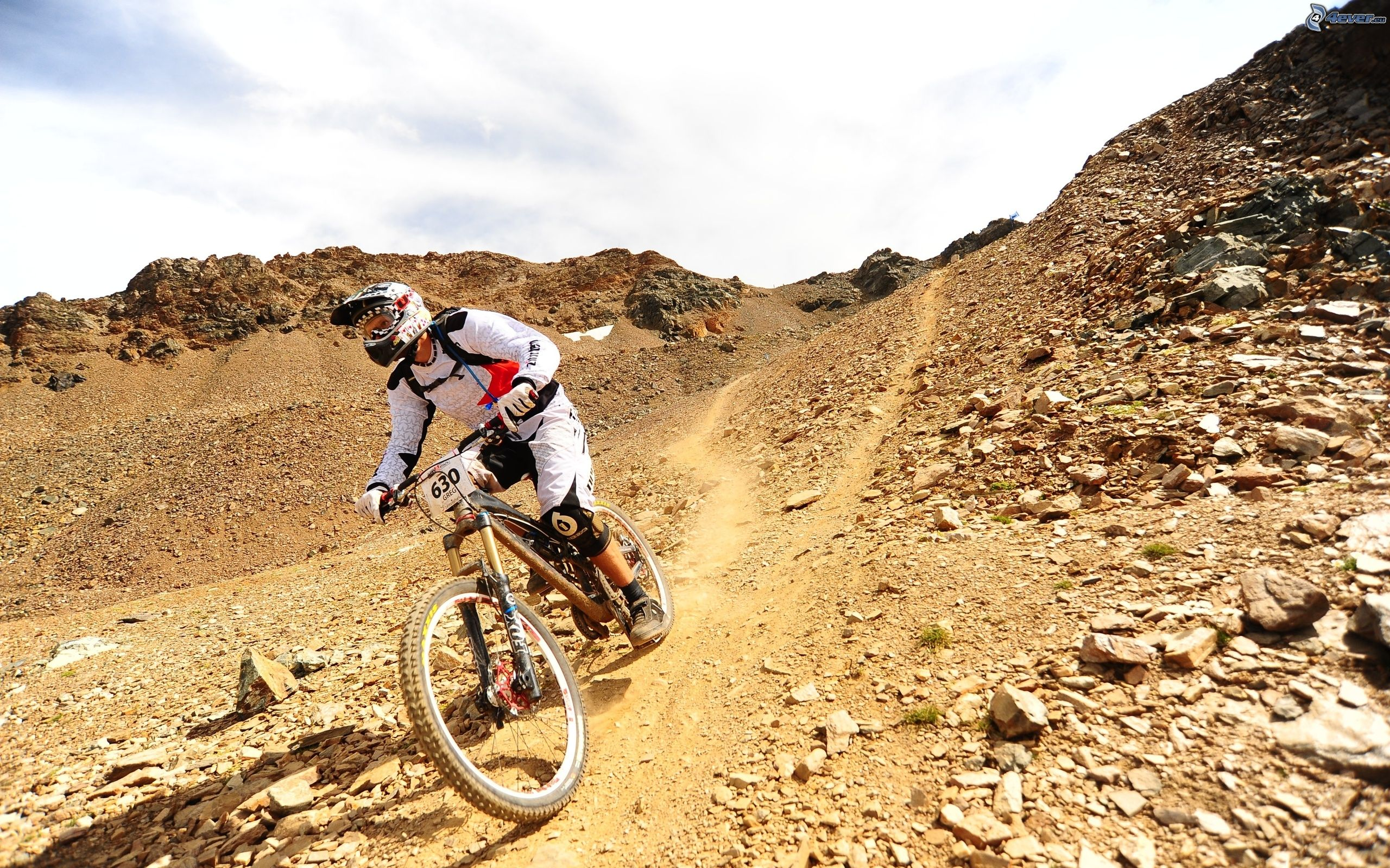 de downhill mtb: