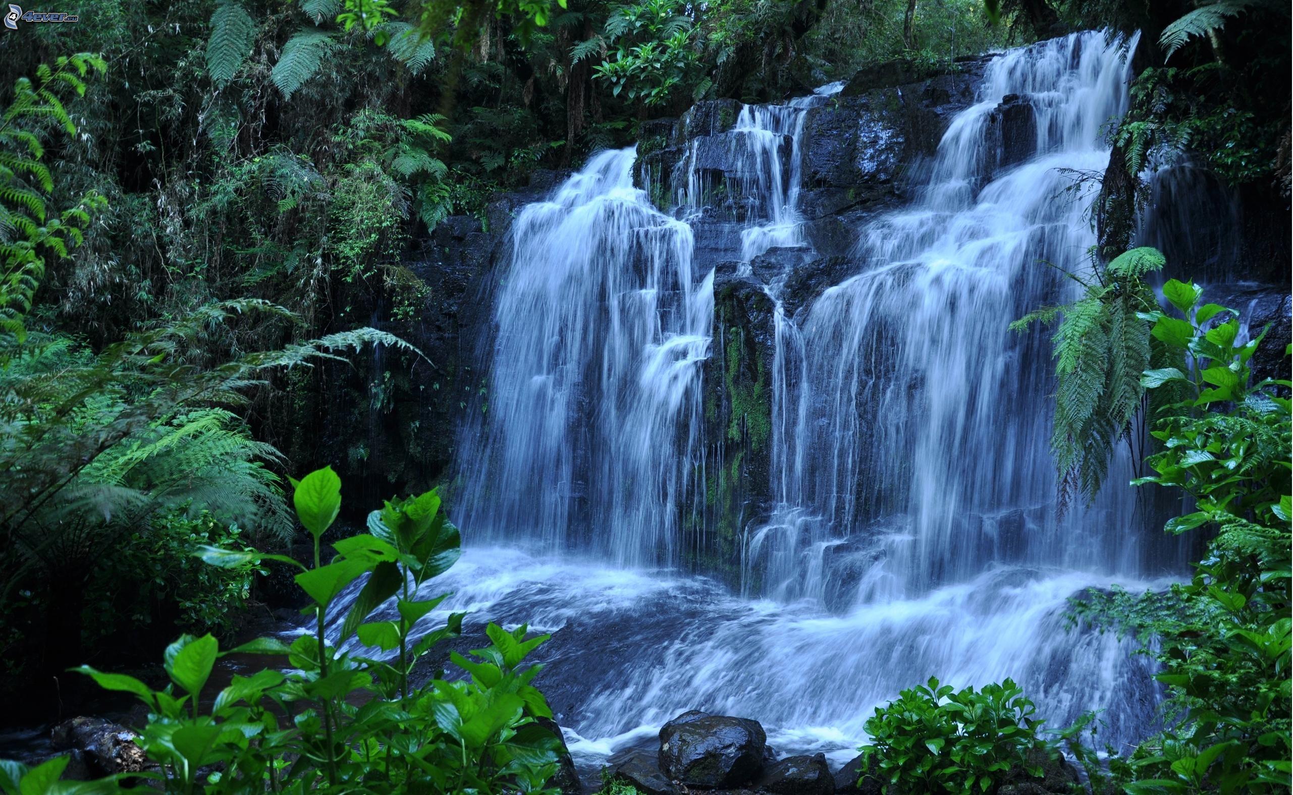 Cascada for Cascadas de jardin fotos