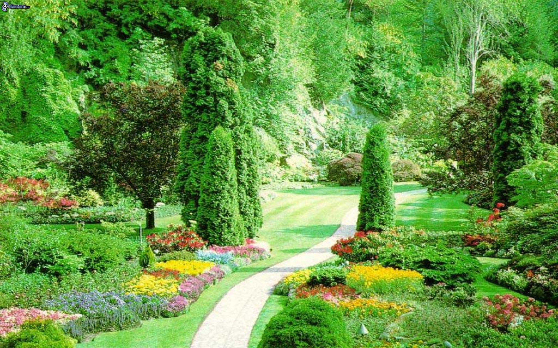 Jard n for Jardin verde