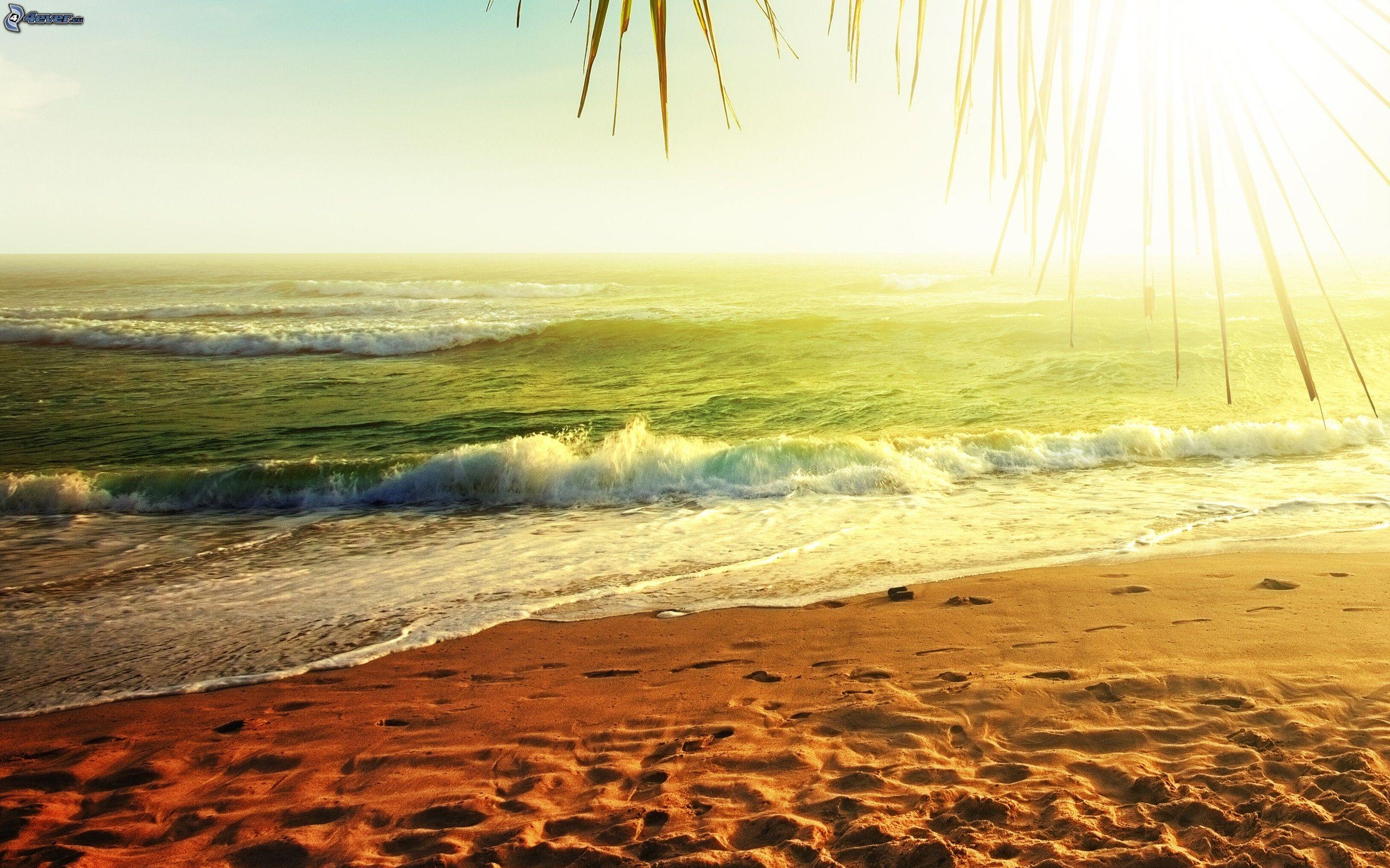 download di sol playa y arena // loyringliso ga