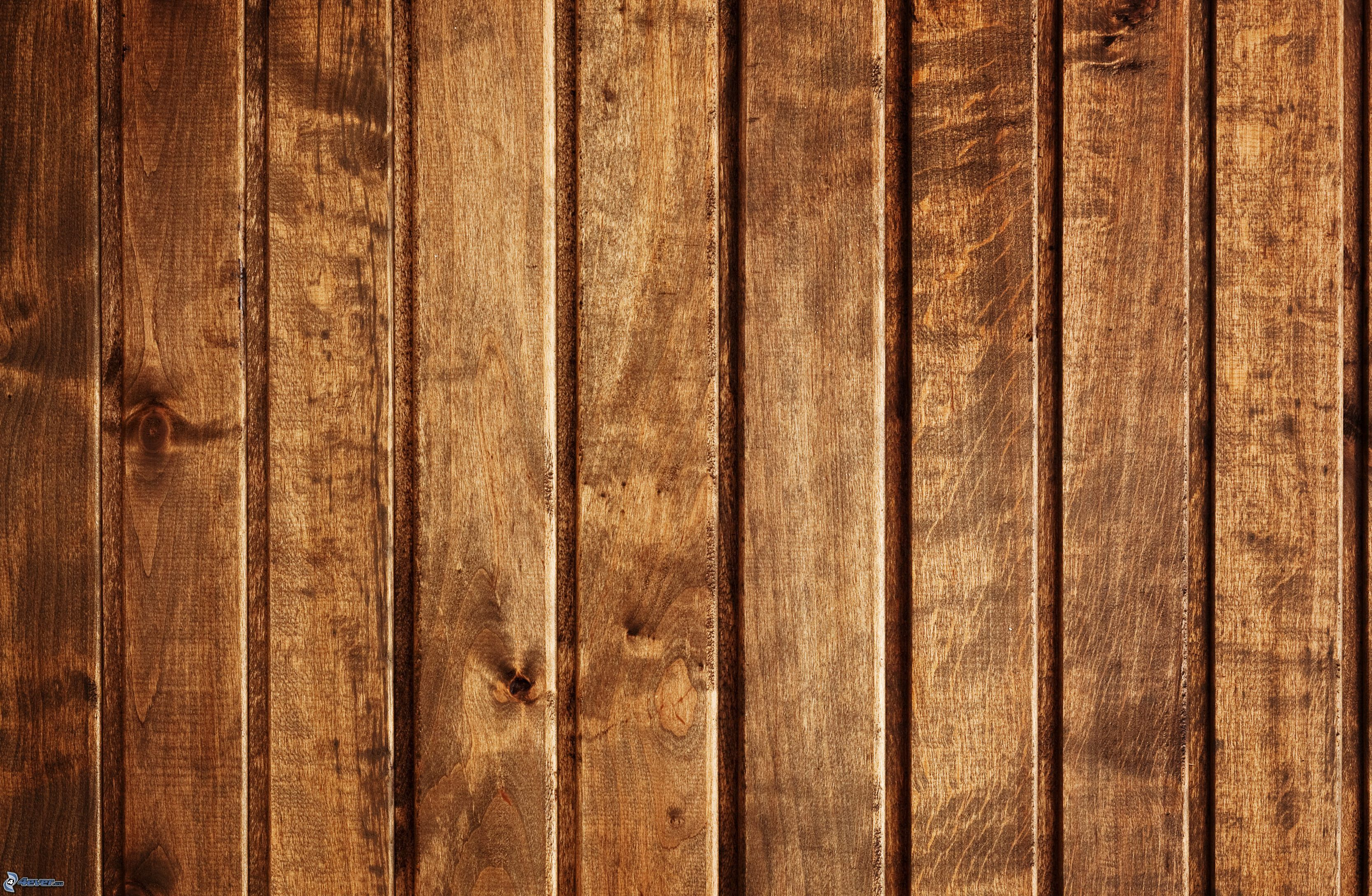 Pared de madera for Paredes en madera